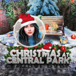Christmas at Central Park