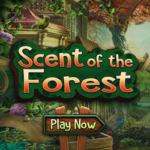Scent of the Forest